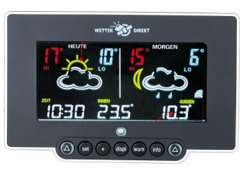 NEON300 Radio Weather Station