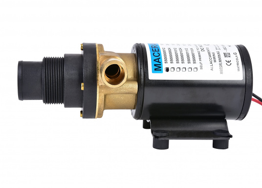 Pompe de vidange à broyeur pour eaux noires