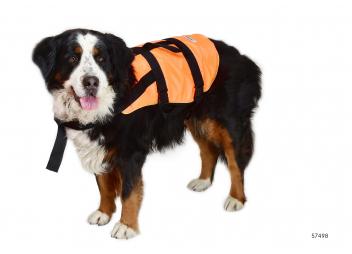 Hunde-Rettungswesten