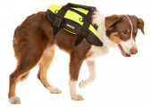 Dogs Life Vest PROFESSIONAL