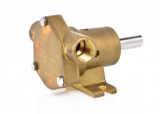 Riemenangetriebene Pumpen mit freiem Wellenende für Sockelmontage. Ausgestattet mit Neopren-Impeller für den Einsatz als See- oder Frischwasserpumpe. Lieferung in verschiedenen Ausführungen.  (Bild 2 von 12)