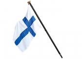 Carbon Flag Pole