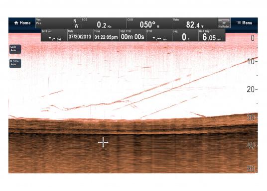 """Weitblick unter Wasser - Sehen Sie """"echte"""" Unterwasserwelt unter Ihrem Boot mit der CHIRP DownVision™Technologie von Raymarine.  (Bild 11 von 16)"""