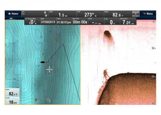 """Weitblick unter Wasser - Sehen Sie """"echte"""" Unterwasserwelt unter Ihrem Boot mit der CHIRP DownVision™Technologie von Raymarine.  (Bild 12 von 16)"""