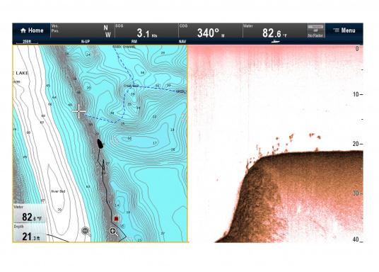 """Weitblick unter Wasser - Sehen Sie """"echte"""" Unterwasserwelt unter Ihrem Boot mit der CHIRP DownVision™Technologie von Raymarine.  (Bild 8 von 16)"""
