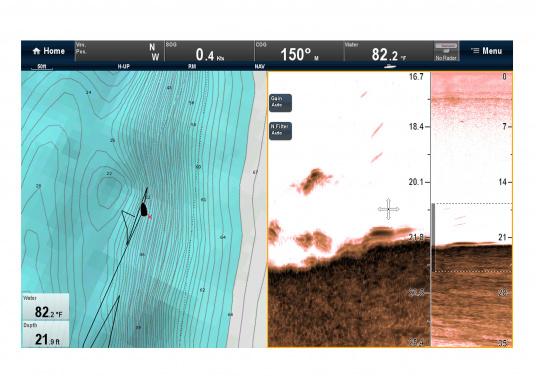 """Weitblick unter Wasser - Sehen Sie """"echte"""" Unterwasserwelt unter Ihrem Boot mit der CHIRP DownVision™Technologie von Raymarine.  (Bild 9 von 16)"""