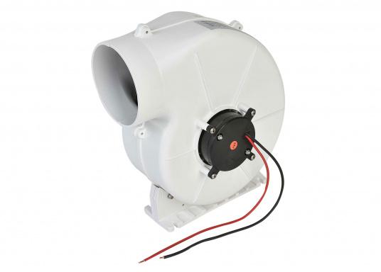 Dieser leistungsstarke Elektrolüfter ist besonders gut für Pantry, WC und Motorraum geeignet. (Bild 5 von 5)
