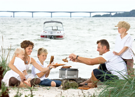 Would you like to grill sausages, steaks, fish or vegetables on board or on the go? Then the COBB EASY TO GO grill is for you! (Imagen 8 of 11)