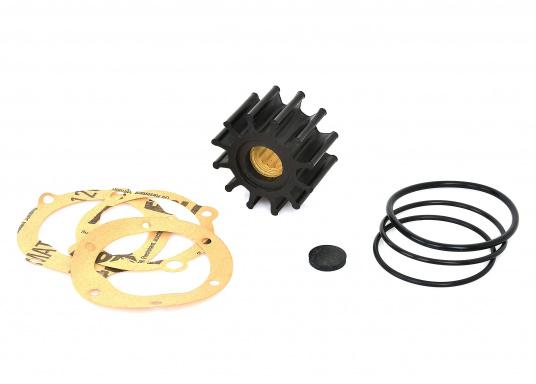 Impeller für verschiedene Motoren.ACHTUNG: Erstausrüster-Qualität. Es handelt sich NICHT um Original Ersatzteile der Motorenhersteller! (Bild 3 von 3)