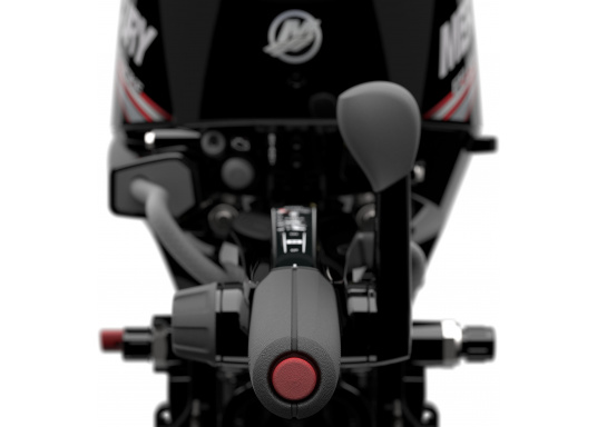 Mercury's F15 EFI outboard engine offers intuitive maneuvering for precise control. (Image 6 of 8)