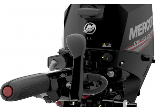 Mercury's F15 EFI outboard engine offers intuitive maneuvering for precise control. (Image 7 of 8)