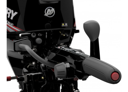 Mercury's F15 EFI outboard engine offers intuitive maneuvering for precise control. (Image 8 of 8)