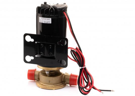 Hervorrangende Impellerpumpe für den Einsatz als Bilgepumpe, Deckwaschpumpe, Feuerlöschpumpe, Frischwasserpumpe und als Öl- oder Dieselpumpe. Förderleistung: 45 l/min. Erhältlich in 12 oder 24 V. (Bild 6 von 8)