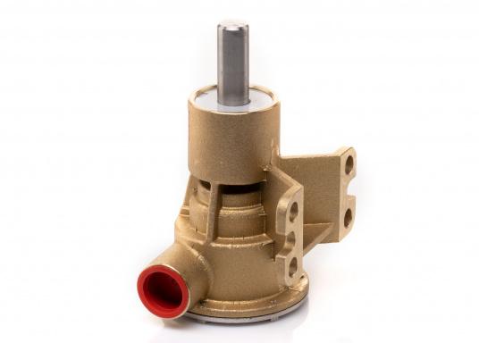 Die Impellerpumpe F5B-8 von JOHNSON kann für verschiedene Anwendungsbereiche verwendet werden: als Kühlwasserpumpe für Motoren, Lenzpumpe, Spülpumpe und als Pumpe für die Entleerung von Fäkalientanks. (Bild 4 von 9)