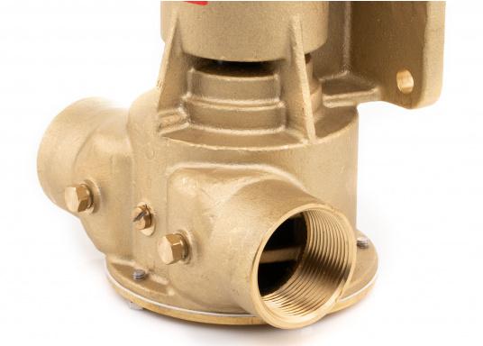 Die Impellerpumpte F8B-5001 von JOHNSON kann als Lenzpumpe, Deckwaschpumpe, Kühlwasserpumpe für Motoren oder auch als Feuerlöschpumpe verwendet werden. (Bild 4 von 8)